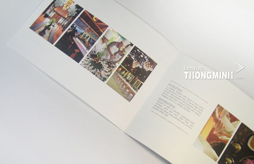Mẫu Brochure - Profile 001